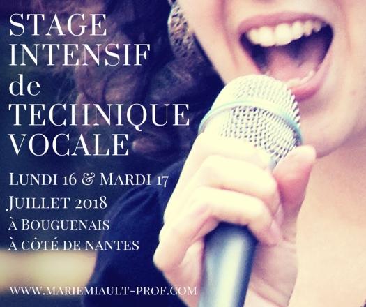 Stage intensif de technique vocale les 16 et 17 juillet 2018 à côté de Nantes