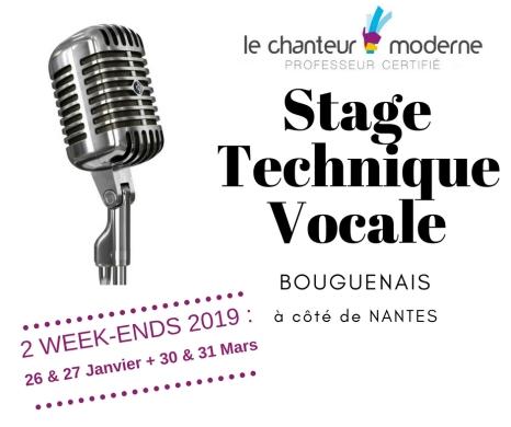 Stage Technique Vocale sur 2 week-ends : 26-27 Janvier + 30-31 Mars 2019 - Bouguenais à côté de Nantes